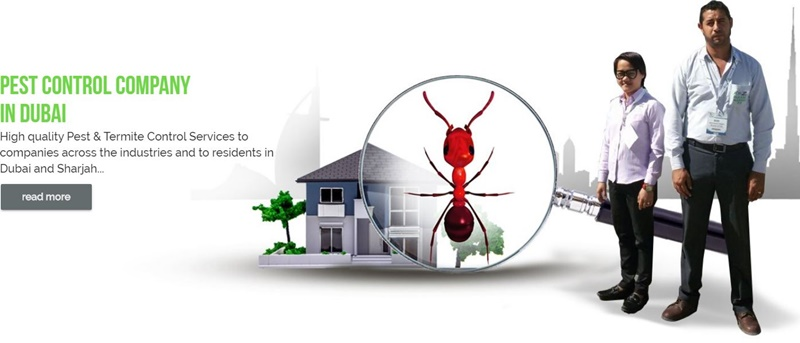 How much should pest control cost