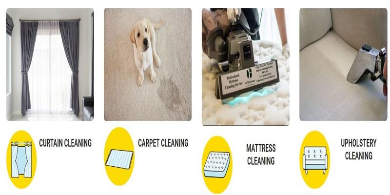 How do I deep clean my carpet